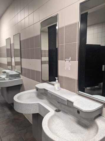 Devious Lick challenge vandalizes school